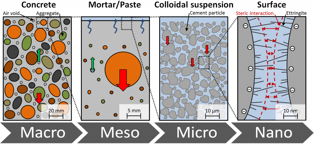 Multiscale and multiphase approach of fresh concrete